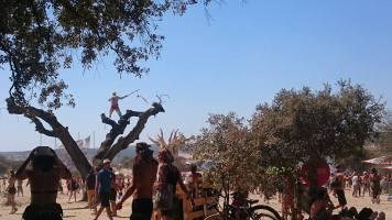 Tree man!