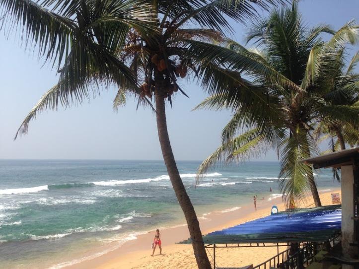 Hansa Surf View